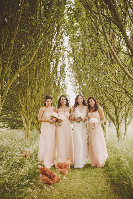 Photo of bride in white dress and bridesmaids in pale peach dresses on a path through trees with brown chickens
