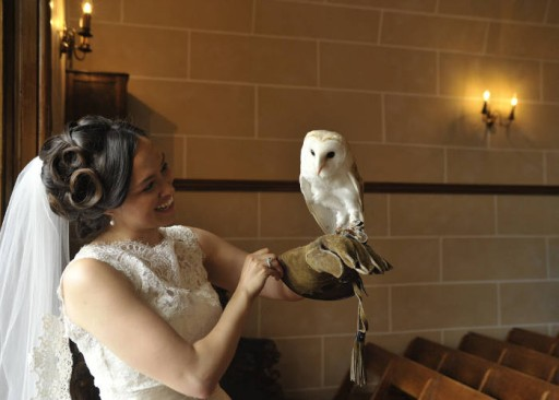 Photo of smiling bride wearing falconry glove and holding owl